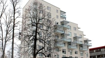 Kalksten Fasad Vratza Natursten